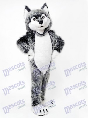 Costume de mascotte loup gris Animal