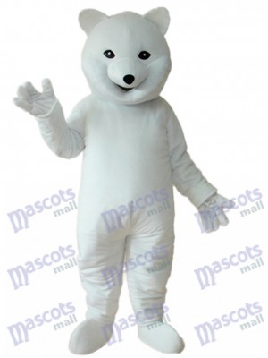 Mascotte ours polaire Costume adulte