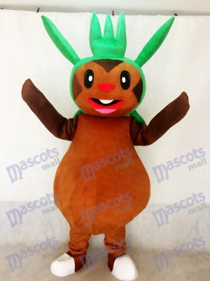 Chespin Pokémon Pokémon GO Pocket Monster Herbe Type Chespie Mascotte Costume